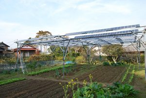 ソーラーシェアリングの普及をー鈴木えつおの一般質問報告8