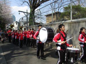 高輪の桜祭りで「みなとの空を守る会」のシール投票