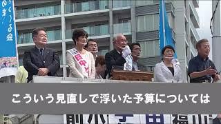財源論 宇都宮けんじ都知事候補の訴えから 6.27調布駅